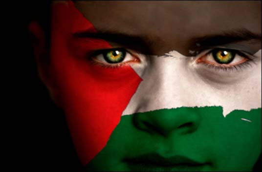 palestine flag face